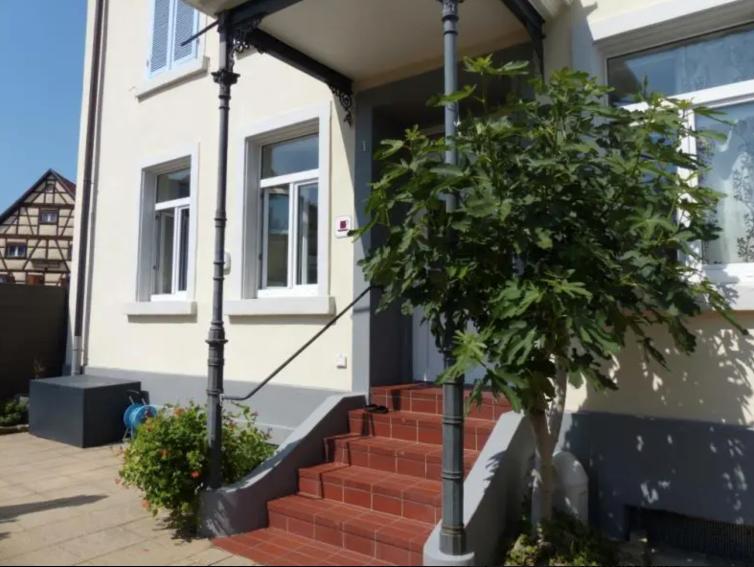 Ansprechendes Mehrfamilien-Wohnhaus in Schliengen, VK 829.000