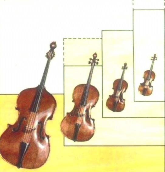 Ankauf von Geigen Cellos